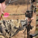 Top 10 Best Rated Compound Bows 2019