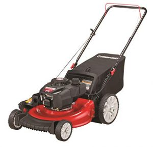Best Lawn Mowers 2020.Best Cheap Lawn Mowers 2020 Tade Reviews