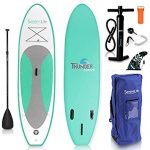 Top 10 Best Rated Paddle Boards 2020