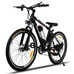 Top 10 Best Rated Electric Bikes 2020