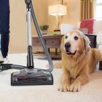 Top 10 Best Rated Pet Vacuums 2021